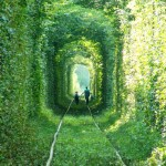 the-tunnel-of-love_3