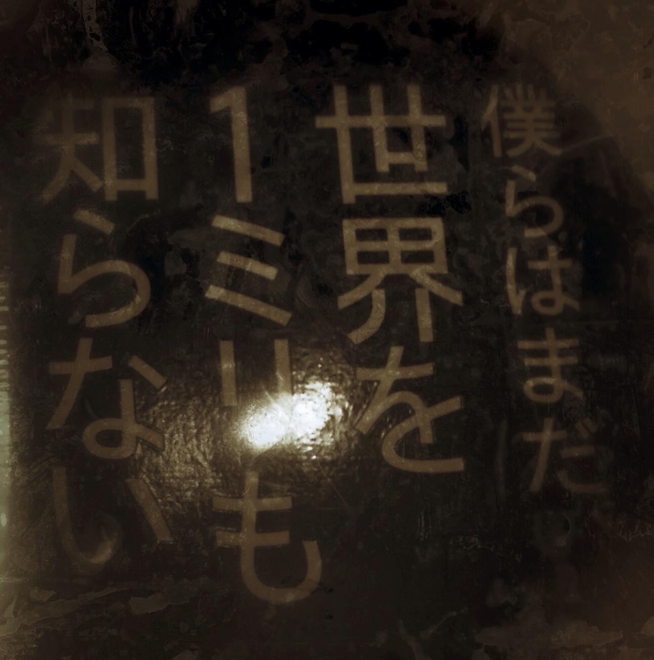 IMG_0558-0.JPG