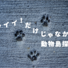 【寄稿】カワイイ!だけじゃなかった動物島